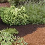 Campbell River bark mulch landscaping products