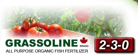 Grassoline All purpose organic fish fertilizer 2-3-0