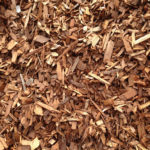 cedar chips campbell river pick up or delivery