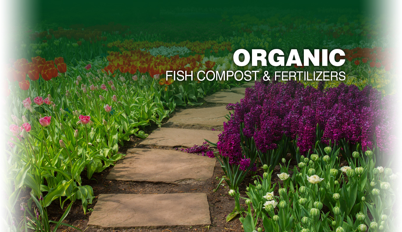 Organic Fish Compost & Fertilizers