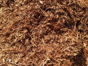 string fir bark Campbell River